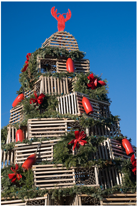 Lobster Trap Christmas Tree, Cape Porpoise, Maine